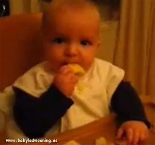Alimentación complementaria para bebés Olivier 9