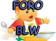BLW. Nuevo foro Baby Led Weaning.